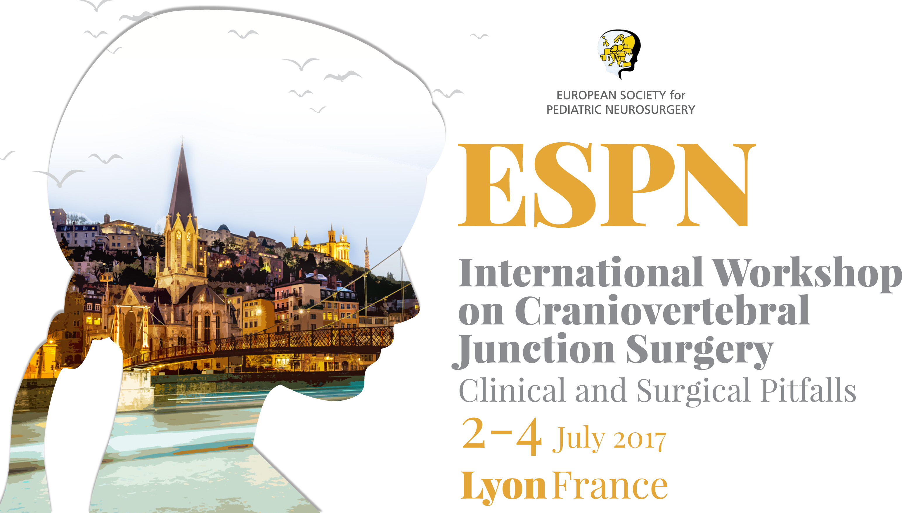 ESPN International Workshop on Craniovertebral Junction Surgery: Clinical and surgical pitfalls